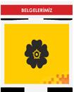 belge-icon